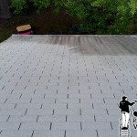 Roof Power Washing Before